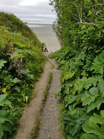 A gravel foot path with a small strip of grass in the center surrounded by green growth. Two step-downs lead to a set of stairs. The beach is in the background. It is mostly cloudy.
