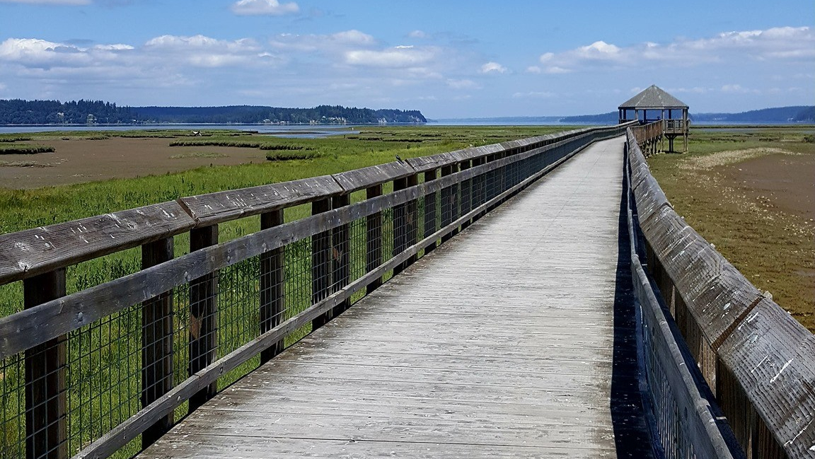 A boardwalk over an estuary. A sheltered viewing platform overlooking the Puget Sound is in the distance.