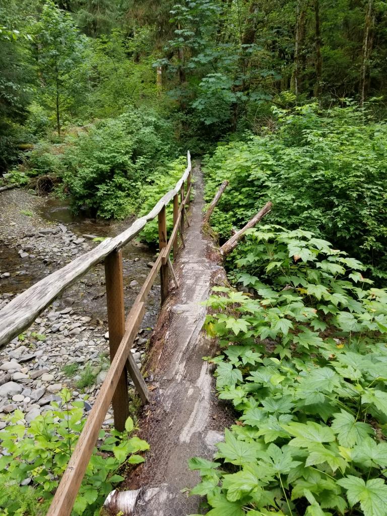 Log foot bridge over the creek.