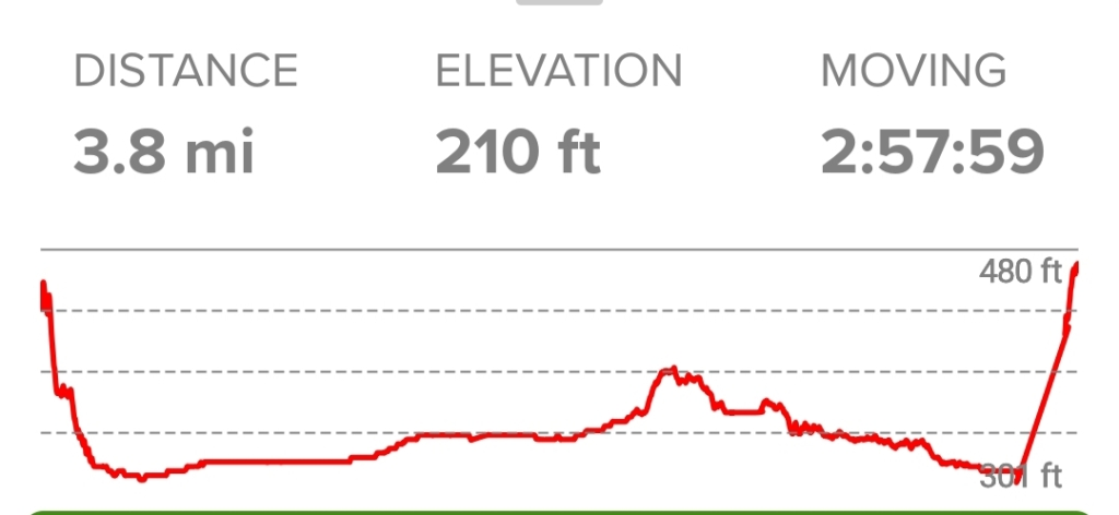 Elevation profile of Bogachiel River Trail to IRa Spring Wetland Loop