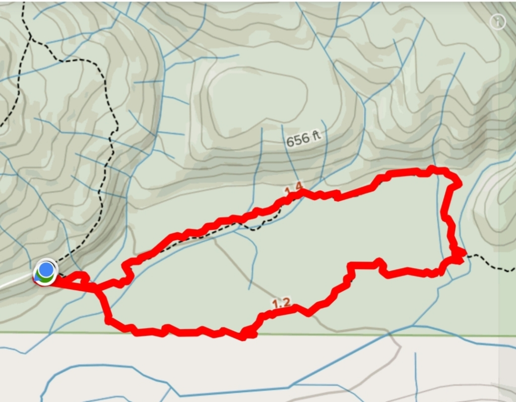 Trail map with the Bogachiel River and Ira Spring Wetland loop trail marked in red.