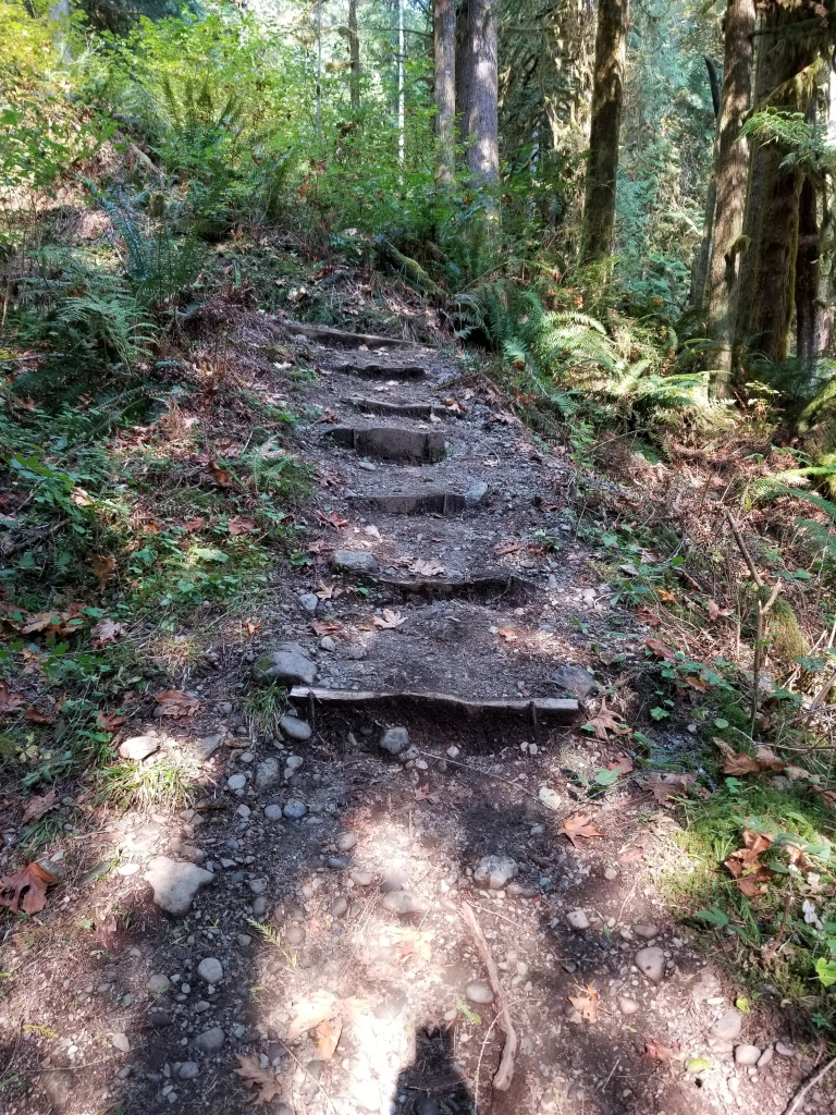 Rocks and wood set into a hill to create stairs.