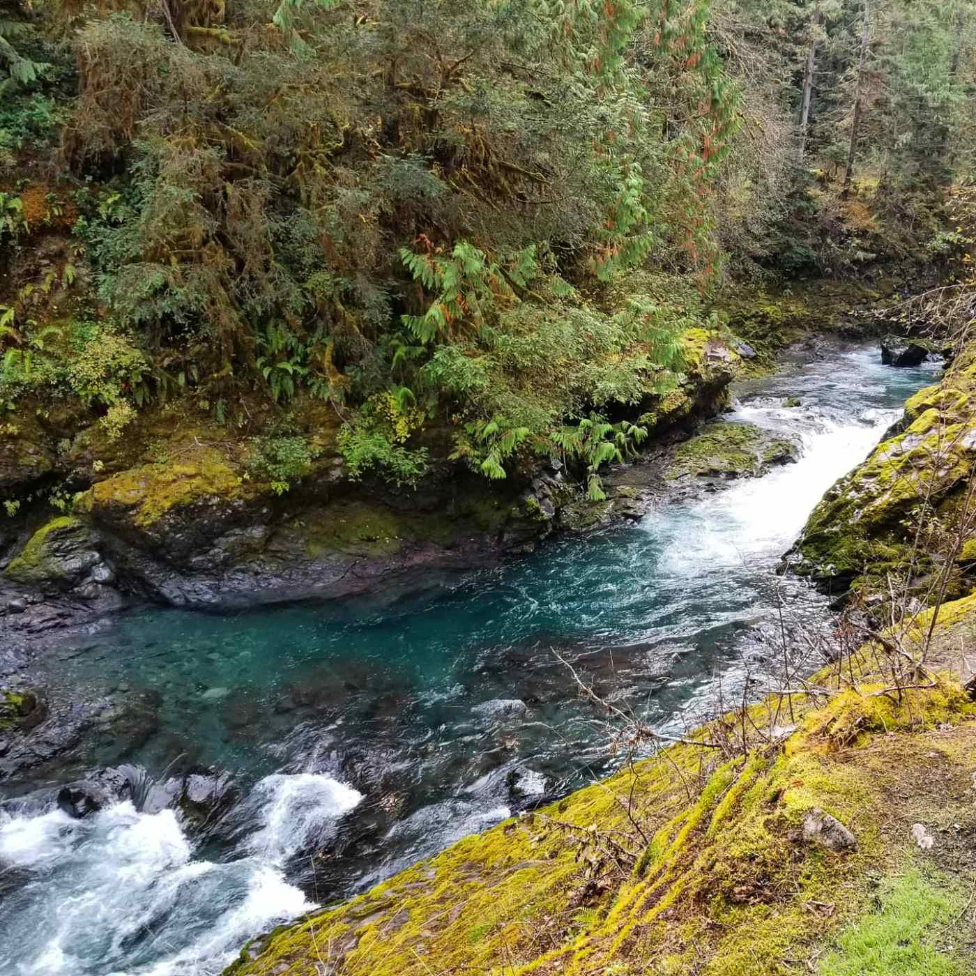 Duckabush River flowing through a rocky passage. Clear blue water with white rapids.