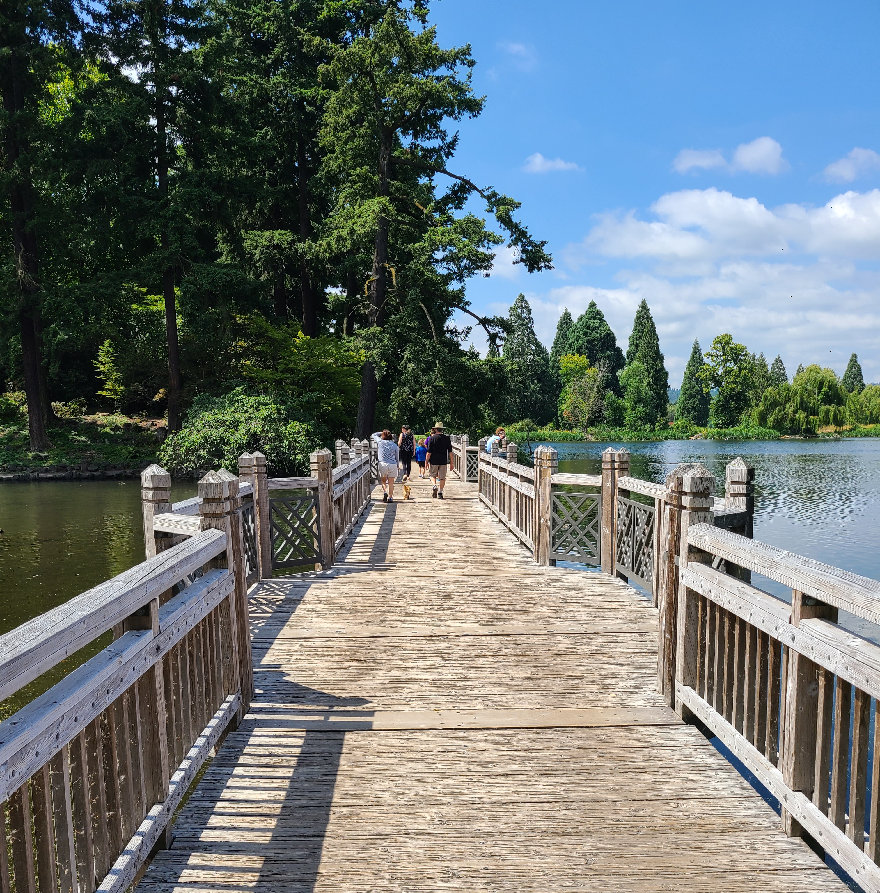 An accessible wooden bridge with pullouts over a lake at Crystal Springs.
